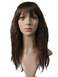 cheap -Synthetic Wig Curly Layered Haircut Synthetic Hair 20 inch Heat Resistant / Women / Synthetic Brown Wig Women's Long Capless Black / Brown / Natural Hairline