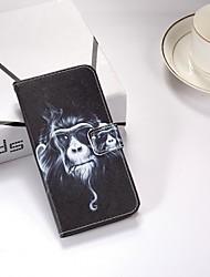 Недорогие -Кейс для Назначение Nokia Nokia 6 2018 / Nokia 5 / Nokia 5.1 Кошелек / Бумажник для карт / со стендом Чехол Животное Твердый Кожа PU
