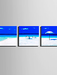 Недорогие -С картинкой Роликовые холсты Отпечатки на холсте - Пляж Море Modern 3 панели