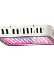 abordables -1pc 1200W 120 LED Intensité Réglable Appareils d'éclairage en pleine croissance Plusieurs Couleurs AC 85-265V