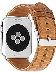 Недорогие -Настоящая кожа Ремешок для часов Ремень для Apple Watch Series 4/3/2/1 Коричневый 23см / 9 дюйма 2.1cm / 0.83 дюймы