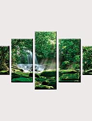 preiswerte -Druck Gerollte Leinwand Aufgespannte Leinwandrucke - Landschaft Modern Klassisch Modern Fünf Panele