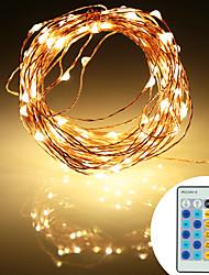 abordables -10m Guirlandes Lumineuses 100 LED SMD 0603 Adaptateur d'alimentation 1 x 2A Blanc Chaud / Blanc Froid / RVB Soirée / Décorative / Décoration de mariage de Noël 12 V 1 set