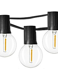 お買い得  -7.62M ストリングライト 12 LED EL 温白色 防水 / パーティー / 装飾用 110-120 V 1セット