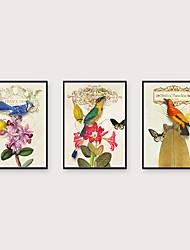 abordables -Art Imprimé encadré Set de Cadres - Animaux A fleurs / Botanique Polystyrène Illustration Art mural