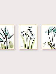 Недорогие -Отпечаток в раме Набор в раме - Натюрморт Цветочные мотивы / ботанический Полистирен Иллюстрации Предметы искусства