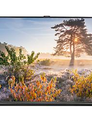 Недорогие -16:9 30 дюймовый Стекловолокно Напольный экран