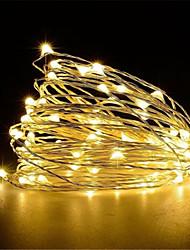 Недорогие -10 м Гирлянды 100 светодиоды Тёплый белый / Белый / Красный Творчество / Для вечеринок / Свадьба Работает от USB