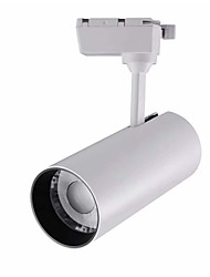 Недорогие -1шт 30 W 2100 lm 1 Светодиодные бусины Простая установка Вращающаяся лампа Тёплый белый Холодный белый Натуральный белый 220-240 V Деловой Дом / офис / CE