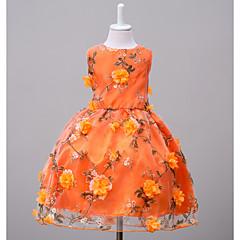 billige Pigekjoler-Børn Pige Blomster I-byen-tøj / Weekend Blomstret Uden ærmer Polyester Kjole Orange 140