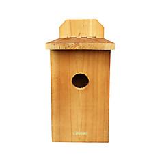 ny bestok® fugl kamera for speiding se fuglelivet med naturlig martial og infrarødt nattsyn
