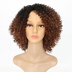 cheap Wigs & Hair Pieces-Synthetic Wig Women's Kinky Curly Brown Synthetic Hair Ombre Hair Brown Wig Medium Length Capless Black / Brown