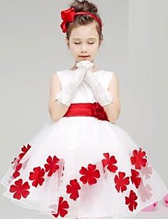 Mädchen Kleid Blumen Baumwolle Sommer / Frühling / Herbst Blau / Rosa / Lila / Rot