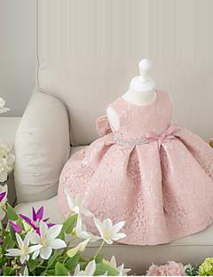 tanie Sukienki dla dziewczynek z kwiatami-Balowa Krótka / Mini Sukienka dla dziewczynki z kwiatami - Koronka Bez rękawów Zaokrąglony z Kokardki przez