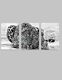 Tuval Seti Soyut Hayvan Modern Geleneksel,Üç Panelli Dikey baskı Sanatı Duvar Dekor For Ev dekorasyonu