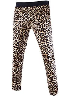 Miehet Seksikäs strenchy Suora Löysä Chinos housut Veryttelyhousut Housut,Keski vyötärö Leopardi Kesä Syksy