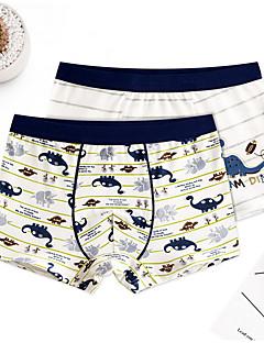 billige Undertøj og sokker til drenge-Drenge Undertøj Tegneserie, Bomuld Forår Simple Elastisk Lysebrun