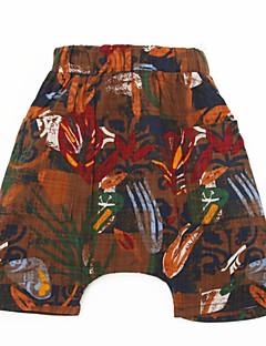 billige Drengebukser-Børn Drenge Geometrisk Shorts
