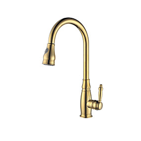 cheap Kitchen Faucets-Kitchen faucet - Contemporary Ti-PVD Pull-out / ­Pull-down Vessel / Brass / Single Handle One Hole