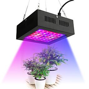 billige LED Økende Lamper-1pc 80 W 2195-2535 lm 42 LED perler Voksende lysarmatur Rød 85-265 V