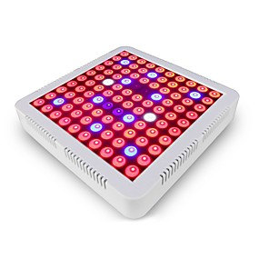 abordables Lampe de croissance LED-AcStar 1 set 100 W 600 lm 100 Perles LED Spectre complet Pour Greenhouse Hydroponic Luminaire croissant Blanc Rouge Bleu 85-265 V Serre de légumes