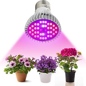 preiswerte LED Pflanzenlampe-1pc 10 W 800-1200 lm 40 LED-Perlen Vollspektrum Wachsende Leuchte Rot Blau UV (Schwarzlicht) 85-265 V Zuhause / Büro