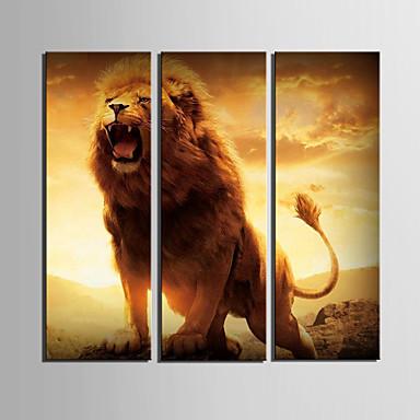 Lærredstryk Art dyr af King Set af 3