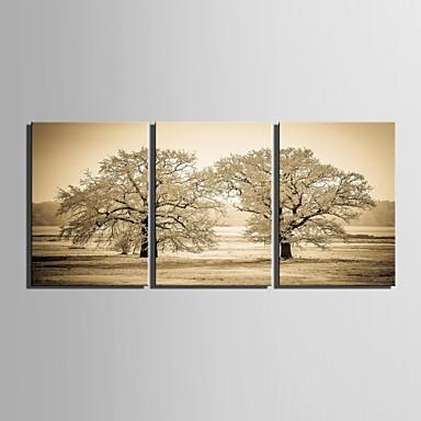 e-home® feszített vászon art fa dekoráció festés sor 3