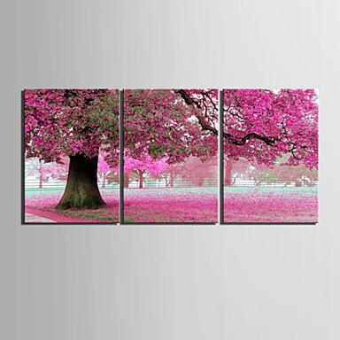 e-home® τεντωμένο καμβά τέχνης σετ ροδακινιές ζωγραφική διακόσμηση του 3