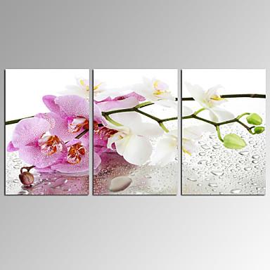 Abstrakti / Moderni / Romantiikka / Pop Art / Fantasy / Leisure / Landscape / Valokuvaus Canvas Tulosta 3 paneeli Valmis Hang , Horizontal