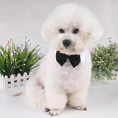 고양이 / 개 매다/보타이 옐로우 / 화이트 강아지 의류 겨울 / 여름 / 모든계절/가을 리본매듭 패션