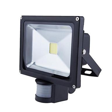 1pc 20 W LED-lyskastere Vanntett / Dekorativ / Motion Detection Monitor Varm hvit / Kjølig hvit 85-265 V Utendørsbelysning / Courtyard / Have 1 LED perler