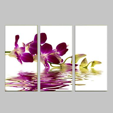 Romance Leisure Botanical Modern Pop Art Three Panels Vertical Print Wall Decor Home Decoration