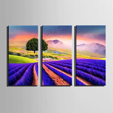 Paisagem Floral/Botânico Modern, 3 Painéis Tela de pintura Vertical Estampado Decoração de Parede Decoração para casa