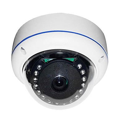 STRONGSHINE 1/3 Inch Sony CCD Dome Camera