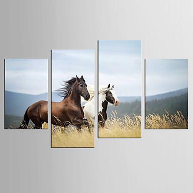 Canvas Set Eläin Abstraktit maisemakuvat Moderni Realismi,4 paneeli Kanvas Mikä tahansa muoto Tulosta Art Wall Decor For Kodinsisustus