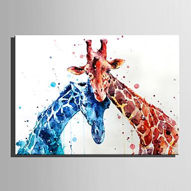 Estampado Laminado Impressão De Canvas - Animais Modern