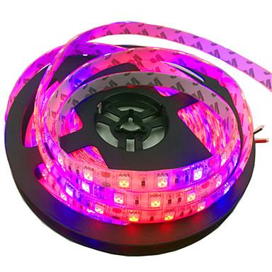 5m 300 المصابيح 5050 SMD أحمر / أزرق ضد الماء / قابل للقص / قابلة للربط 12 V 1PC / IP65 / اللصق التلقي