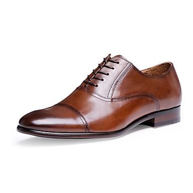 Herrn Schuhe Leder Nappaleder Frühling Herbst formale Schuhe Komfort Outdoor Schnürsenkel für Normal Büro & Karriere Schwarz Braun