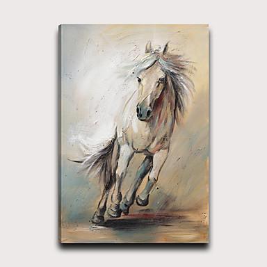 Painettu Pingoitetut kanvasprintit - Eläimet Moderni Moderni Art Prints