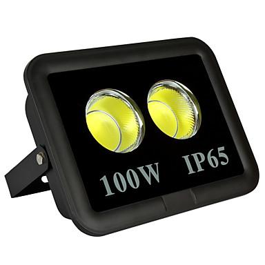 billige Utendørsbelysning-1pc 100 W LED-lyskastere Vanntett / Dekorativ Varm hvit / Kjølig hvit 85-265 V Utendørsbelysning / Svømmebasseng / Courtyard 2 LED perler