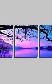 Impression sur Toile Paysage Trois Panneaux Format Vertical Imprimé Décoration murale Décoration d'intérieur