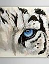 Pictat manual Animal Un Panou Canava Hang-pictate pictură în ulei For Pagina de decorare