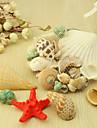 Decoratiuni nunta Temă Plajă Primăvară Vară Toamnă