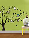 Photo Stickers muraux, botanique arbre généalogique sont Favorite