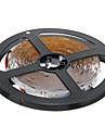 ZDM ™ 5m 24w 300x3528smd 6000k rece lampă de lumină albă LED benzi (12v dc)