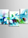 Floral/Botanic Botanic Clasic Realism, Trei Panouri Orizontal Imprimeu Decor de perete Pagina de decorare