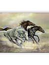Pictat manual Animale Orizontal, Stil European Modern pânză Hang-pictate pictură în ulei Pagina de decorare Un Panou