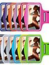 nou banderola sport pentru iPhone 6plus / 6S plus (culori asortate)