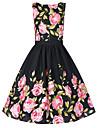 Pentru femei Mărime Plus Size Patinatoare Rochie - Imprimeu, Floral